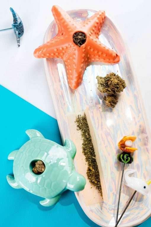 Art of Smoke Lifestyle Scenery Sea Turtle Starfish
