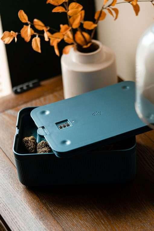 Lockable Storage Box MARYJAE cannabis